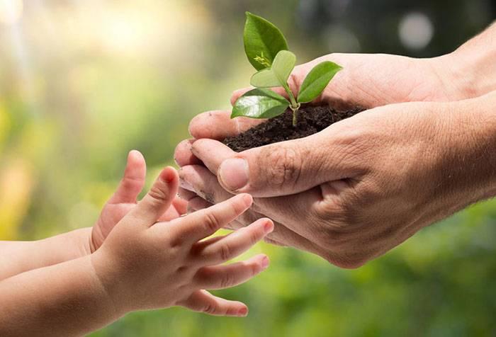 Экологическое воспитание ребенка