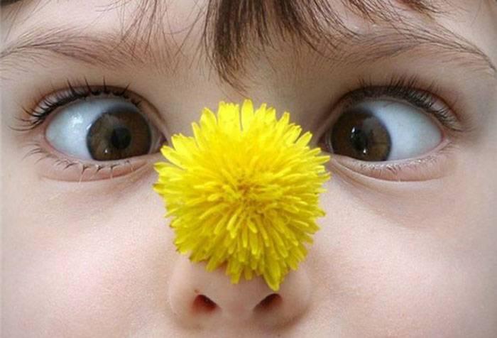 Ребенок с одуванчиком на носу