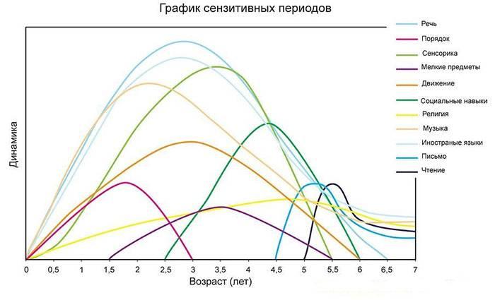 График сензитивных периодов