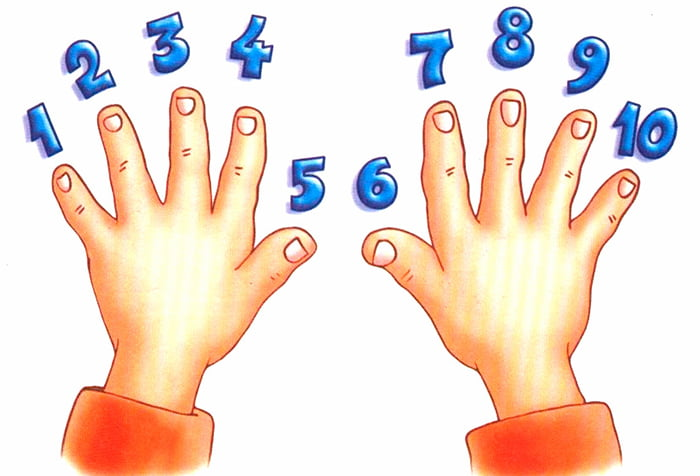 Пронумерованные пальцы на руке