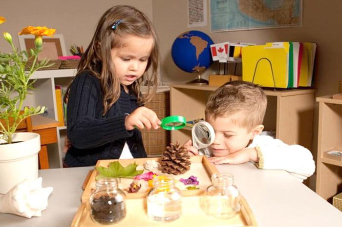 Дети играют с природными материалами