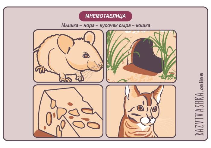 Мнемотаблица про кошку и мышку