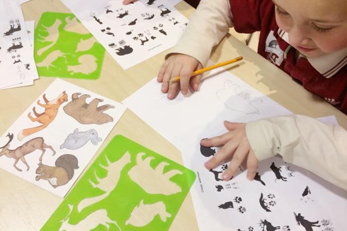 Ребенок рисует зверей по трафаретам