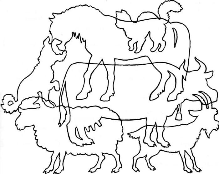 """Картинка """"Найди животных"""""""