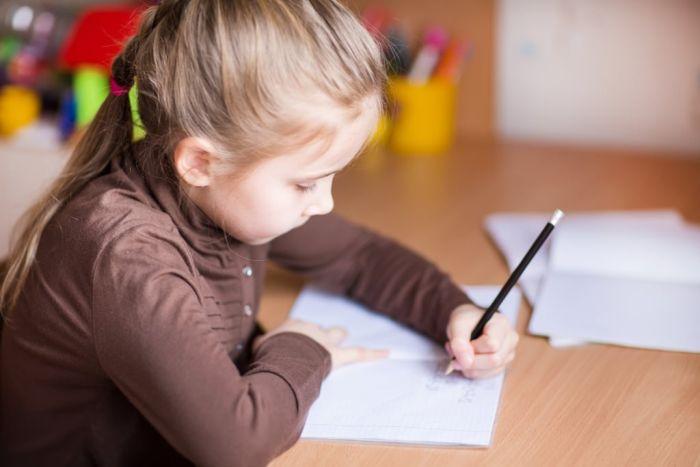 Девочки делает уроки