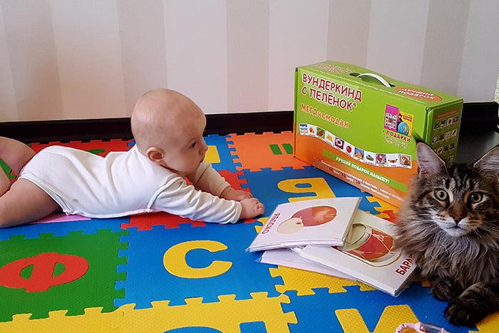 Малыш с карточками Домана