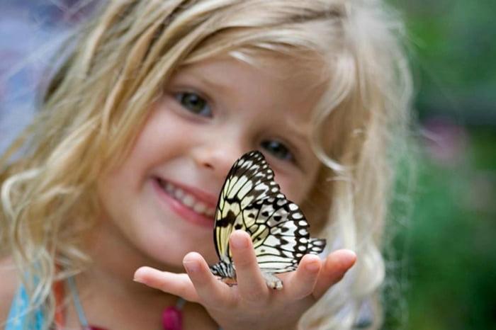 Девочка держит бабочку на ладони