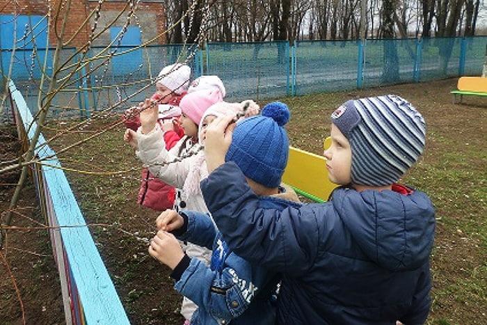 Дети осматривают набухшие почки на деревьях весной