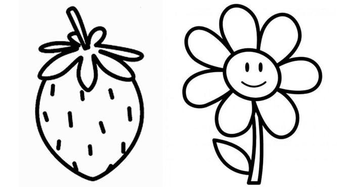 Контуры для рисования цветок и клубника