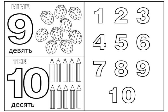 Раскраска с цифрами
