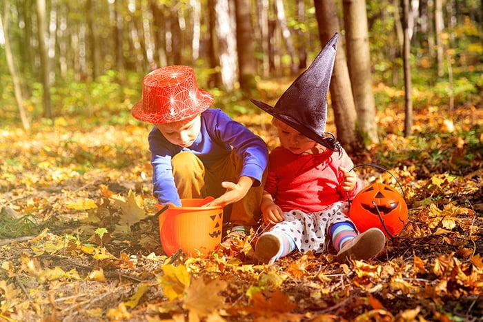 Дети на осенней прогулке