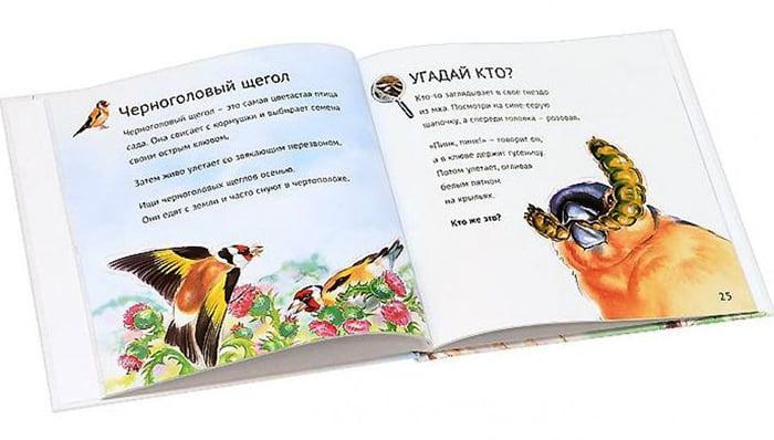 Детская книга из серии «Кто у нас живет на даче»
