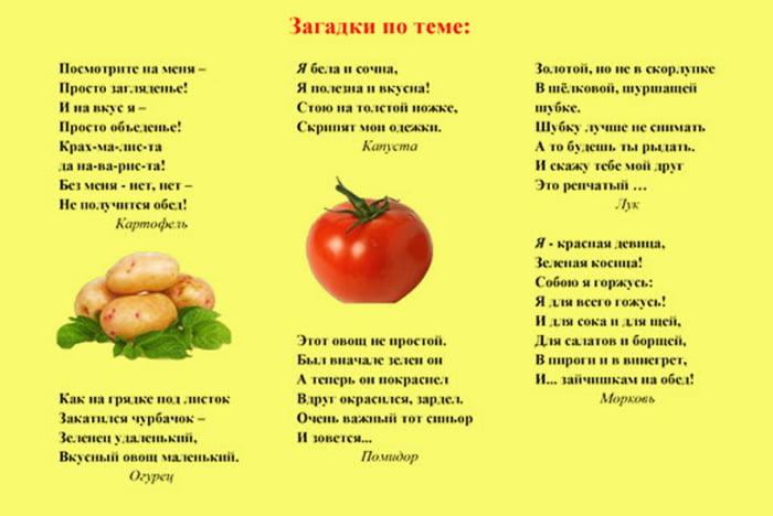 Загадки про овощи для школьников