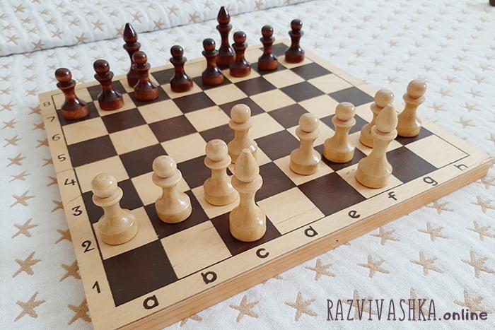 Пешки и слоны на шахматной доске