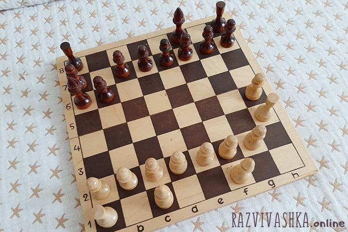 Передвижение слона и ладьи по шахматной доске