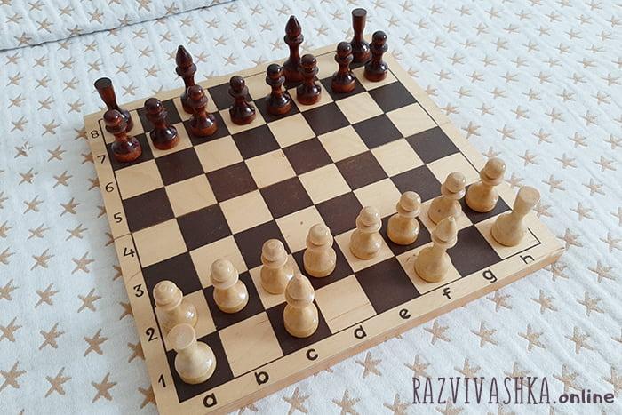 Пешки, слоны и ладьи на шахматной доске