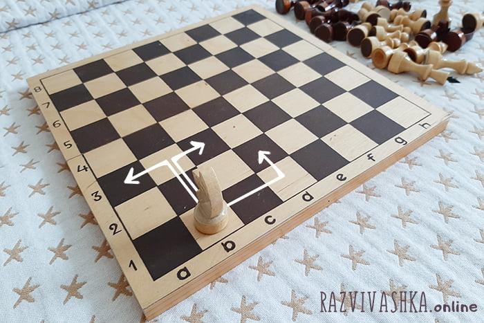 Варианты хода для коня в шахматах