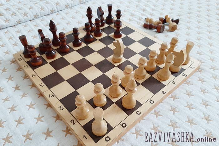 Кони, слоны, ладьи и пешки на шахматной доске