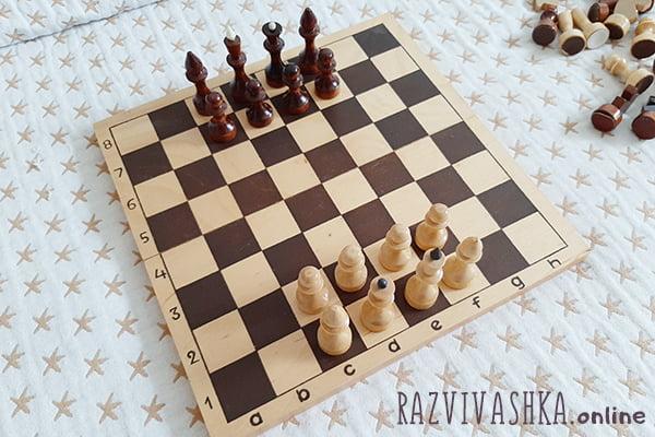 Упрощенная шахматная игра с королем, ферзем, слонами и пешками