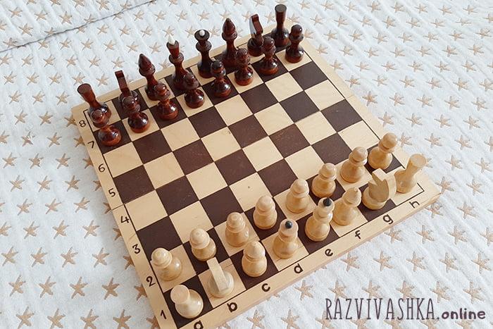 Фигуры на шахматной доске перед началом игры