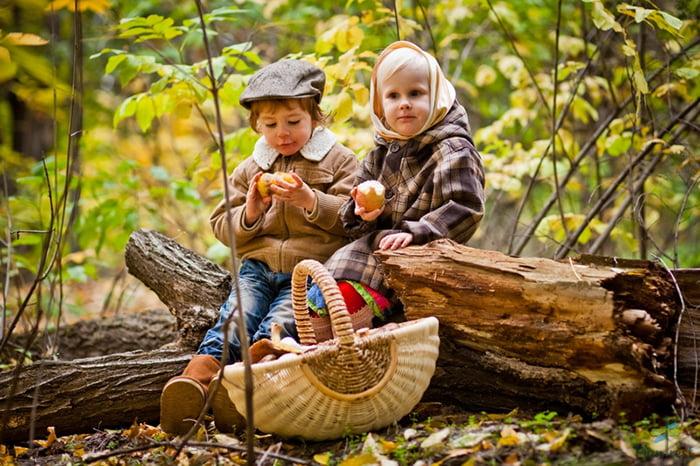 Дети на пикнике в лесу