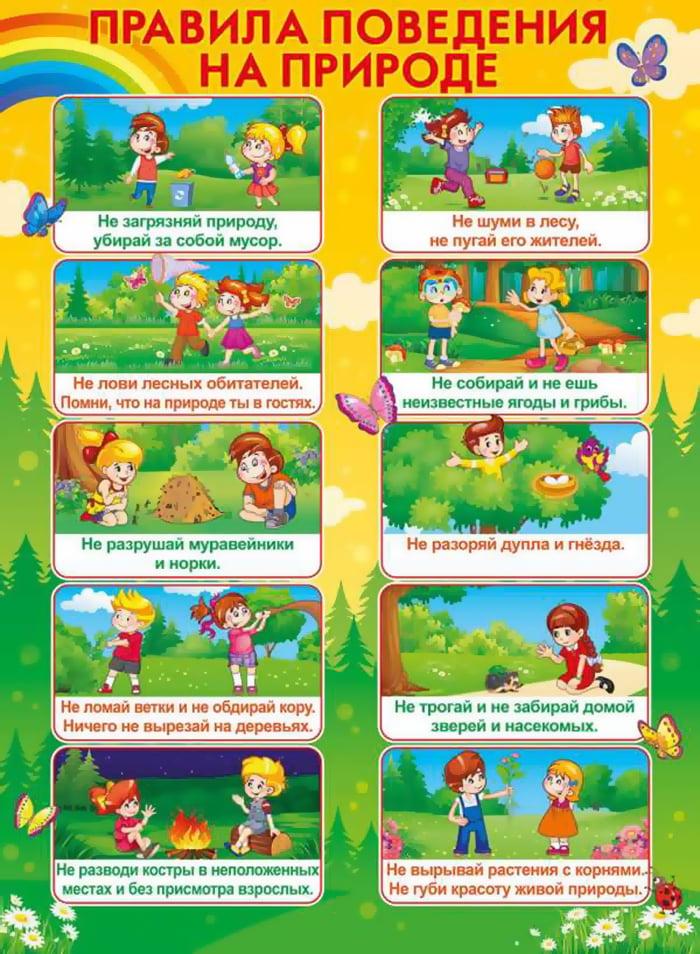 Памятка для детей дошкольного возраста о поведении в лесу