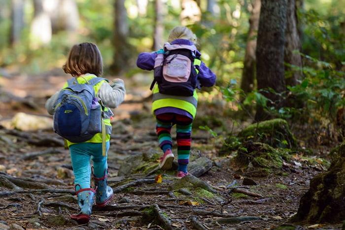 Дошкольники в лесу
