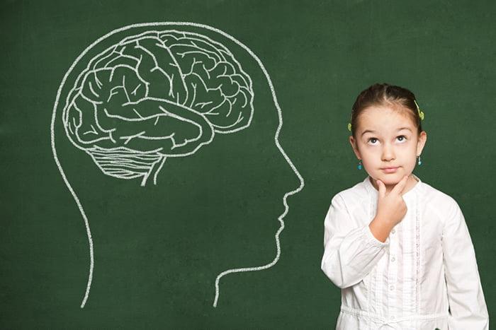 Девочка и строение мозга