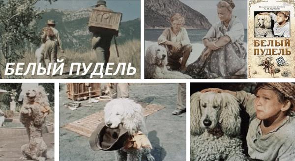 Белый пудель фильм 1955