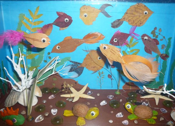 Аквариум из рыбок