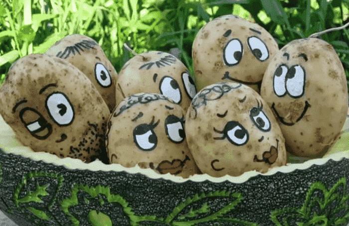 Веселые мордочки из картошки